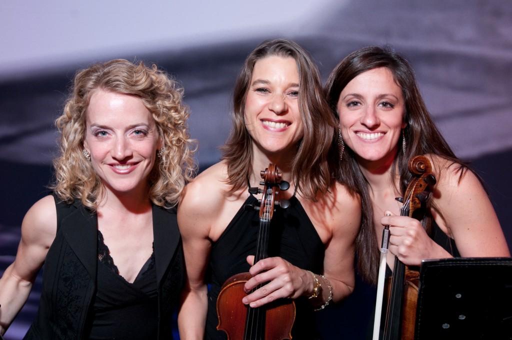 Violins -1485